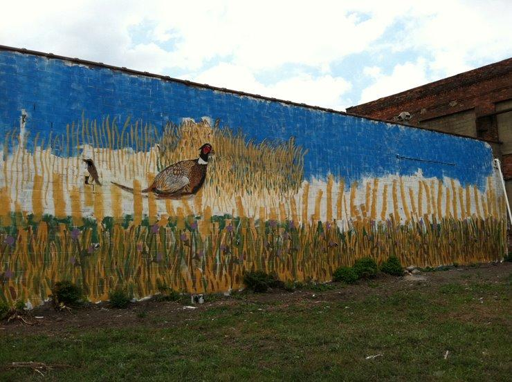 One mural by artist Marianne Burrows features a pheasant, a common sight in Detroit's vacant lots.