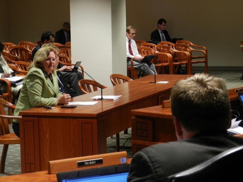 State Rep. Holly Hughes (R) takes questions on her bill during the state House Tax Policy committee meeting