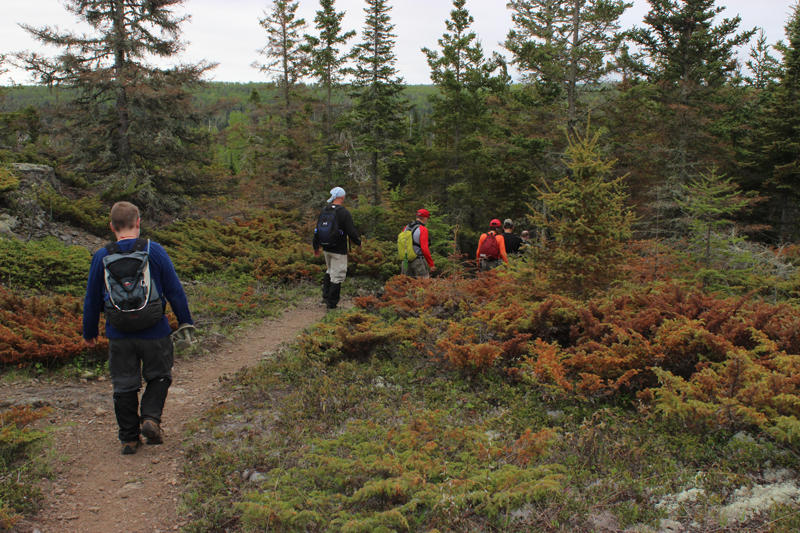 Moosewatch volunteers hike along the trail on Isle Royale National Park.