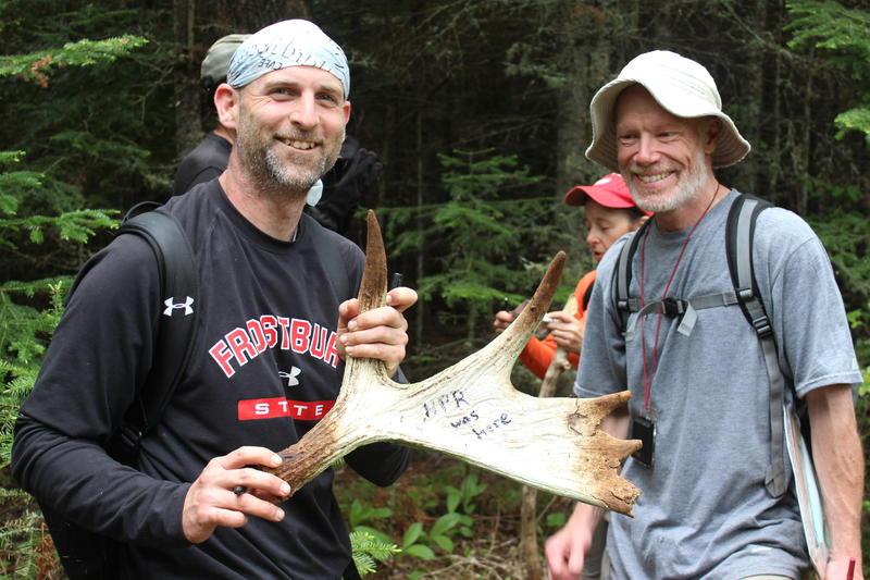 Moosewatch volunteers mark an antler