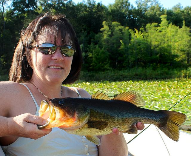 A woman catches a bigmouth bass near Hope, Michigan.