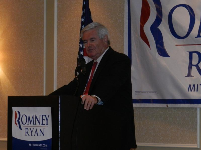 Former Speaker of the House and former GOP presidential candidate Newt Gingrich addresses the Monday breakfast meeting for the Michigan RNC delegation