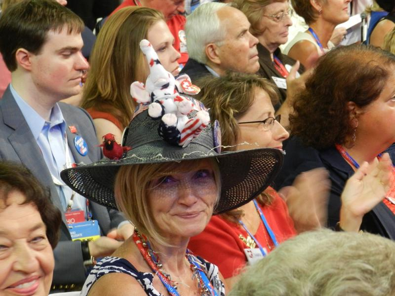 Ohio delegate shows her colors.