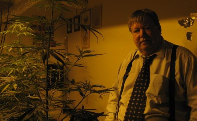 Medical marijuana patient John Ter Beek grows a few marijuana plants in the basement of his home in Wyoming, Michigan.