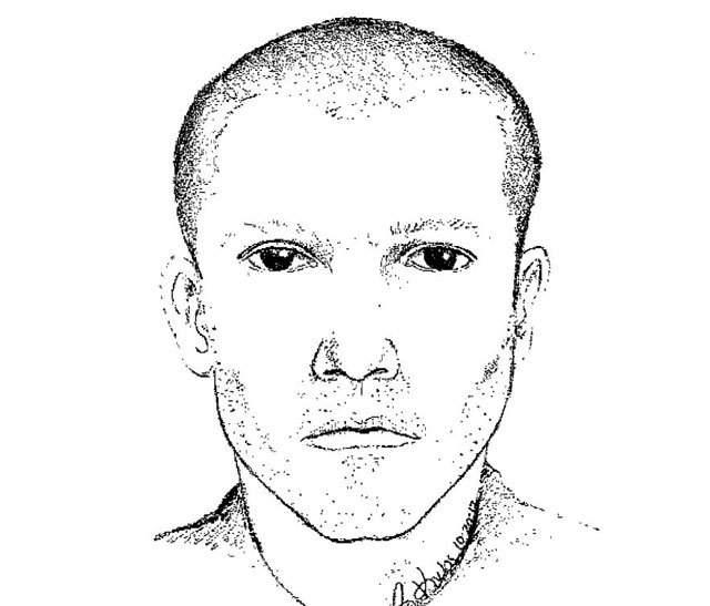 A sketch of a possible suspect in the I96 shootings