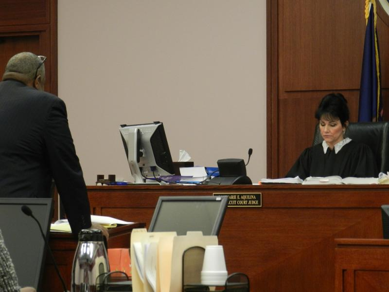 Ingham County Ciruit Court Judge Rosemarie Aquilina listens as attorney Herbert Sanders makes his argument that Michigan's Emergency Financial Manager law should be off the books