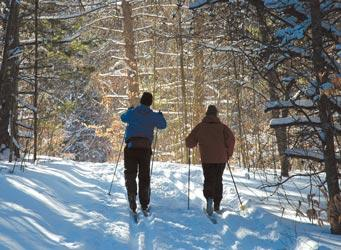 Cross country skiing in Michigan