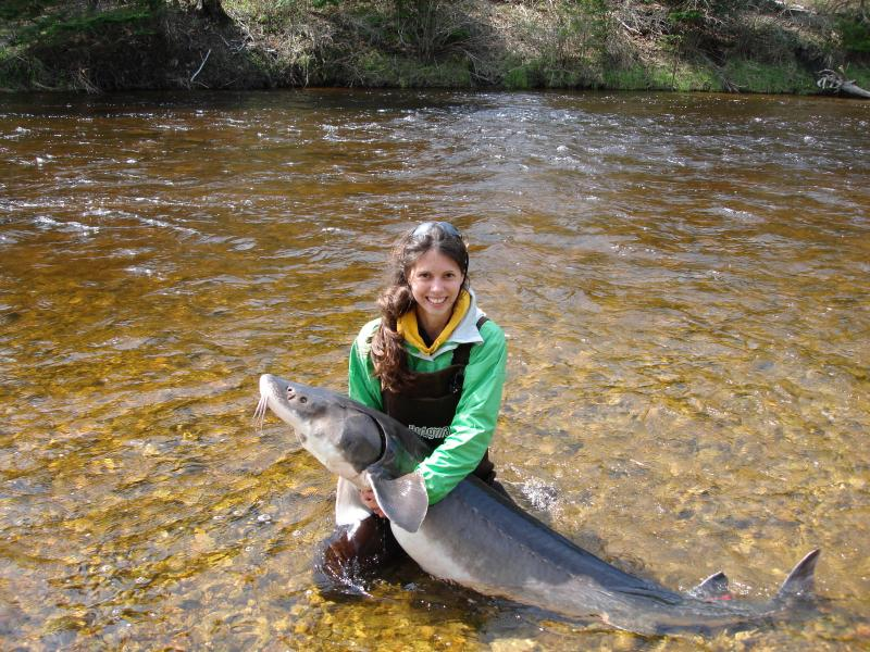 A former MSU student researcher with a sturgeon.