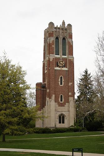 Michigan State University receives a high number of international applicants each fall