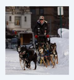 Dogsledding in Detroit at the Motown Winter Blast.
