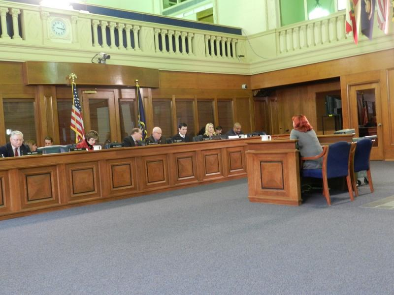 Members of the state senate Health Policy committee listen to testimony during Thursday's hearing on SB 136