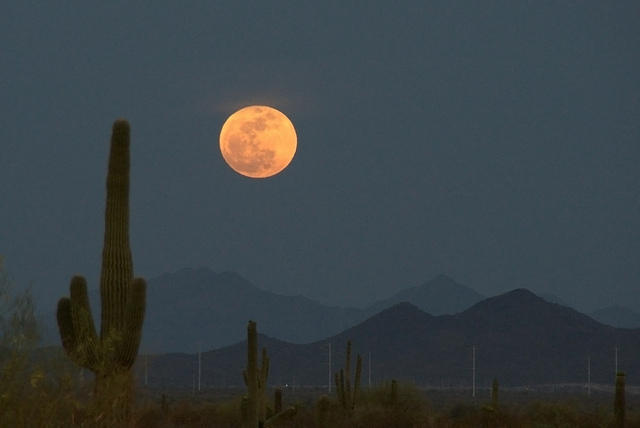 A supermoon over the Sonoran desert