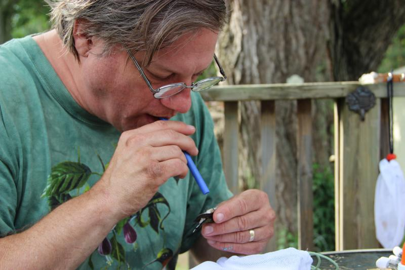 Bander Allen Chartier blows through a straw to examine a hummingbird.