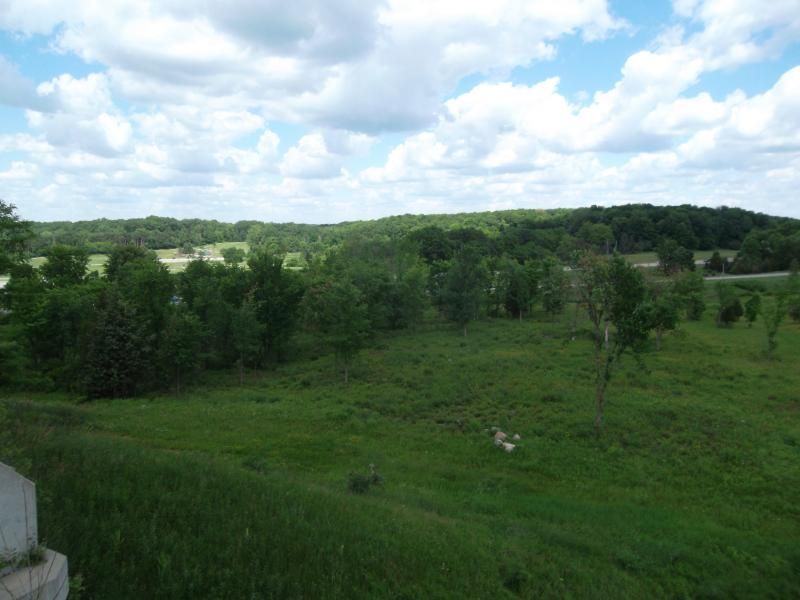 The new treatment system would take advantage of the natural slope of the land from the airport down to the Thornapple River, behind the trees in the distrance.