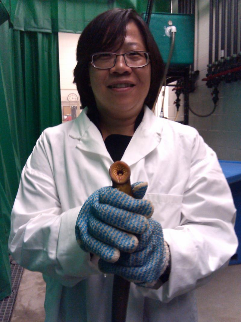MSU researcher Yu-Wen Chung-Davidson with a sea lamprey.