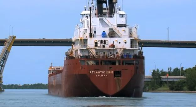 Ships crossing through the Welland Canal can bring in invasive species. Lake freighters can then move those invaders around.