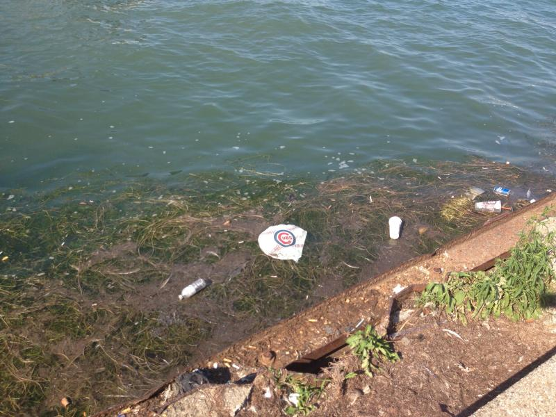 Plastic pollution along the lakeshore in Chicago.