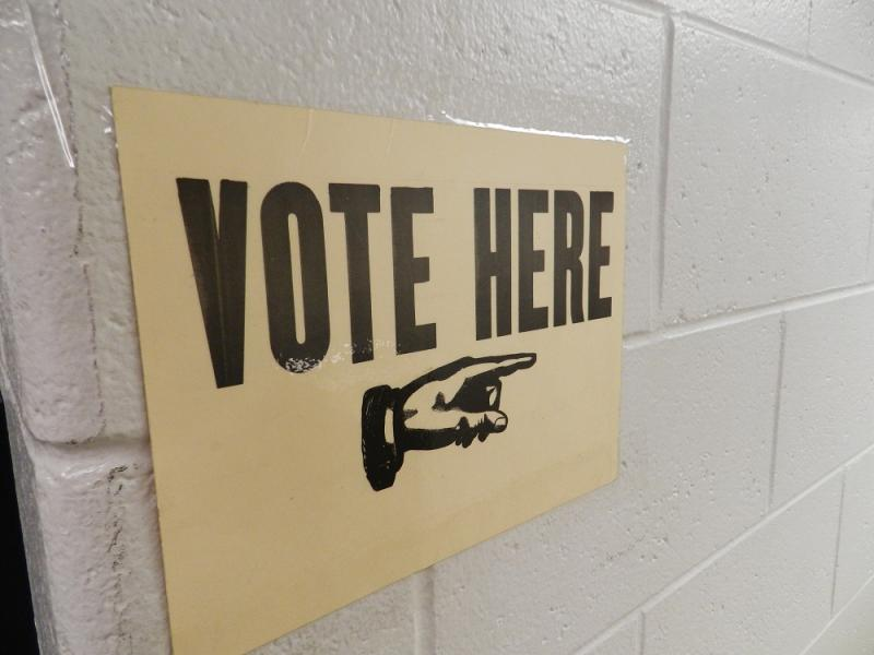 Voters in more than 50 Michigan counties will be casting ballots on Tuesday (file photo)