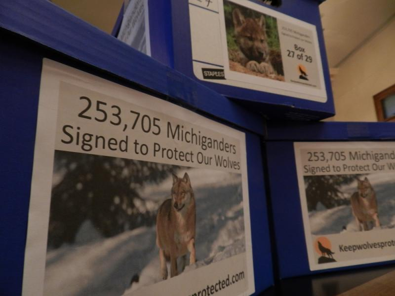 Petitions from the 1st campaign to block a wolf hunt in the U.P.   Organizers hope to collect an equal amount for a 2nd referendum in 2014.