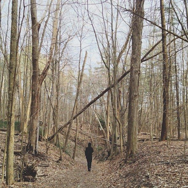 Shigeto in the woods