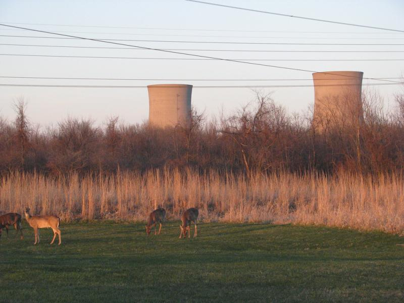 Fermi 2 sits near to Lake Erie in Monroe County.