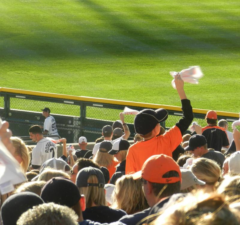 A young Detroit Tigers fan waves a rally towel during Game 4 of the ALDS.