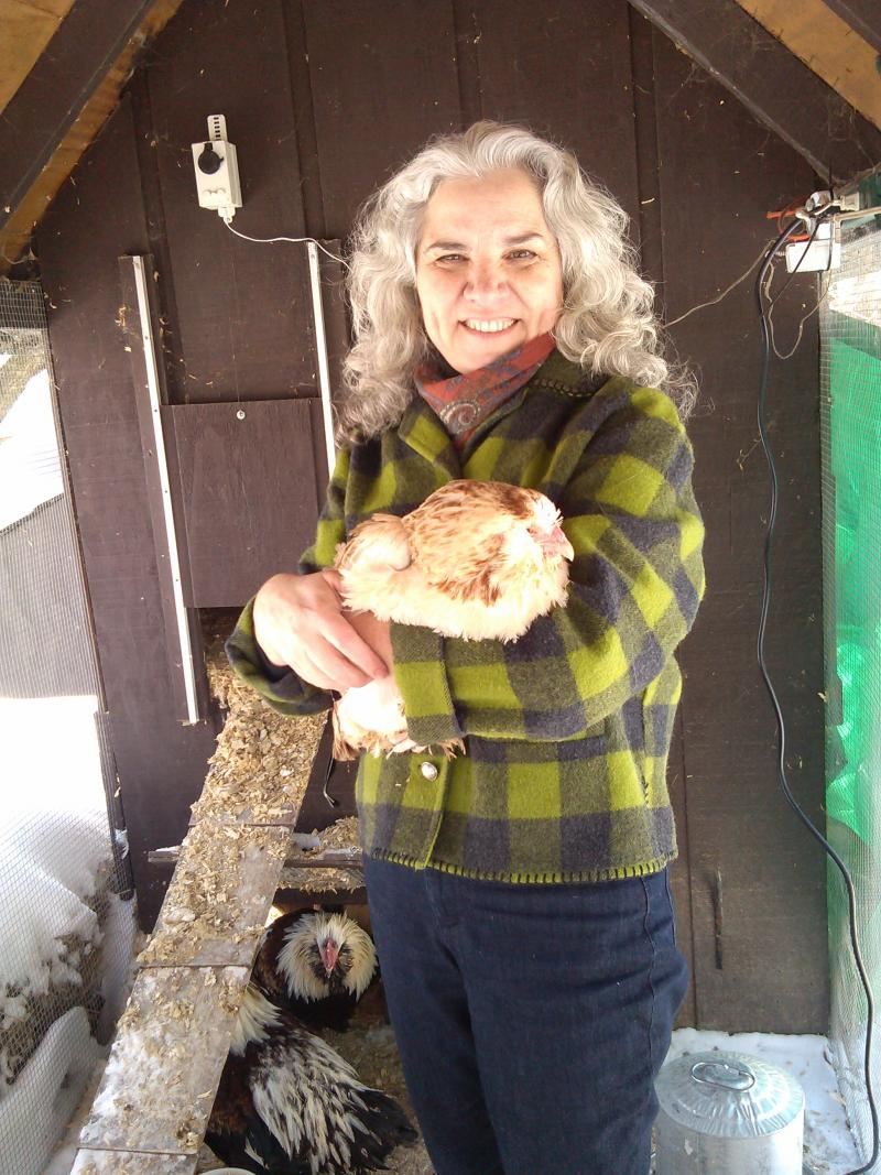 Wendy Banka and one of her salmon faverolle chickens.