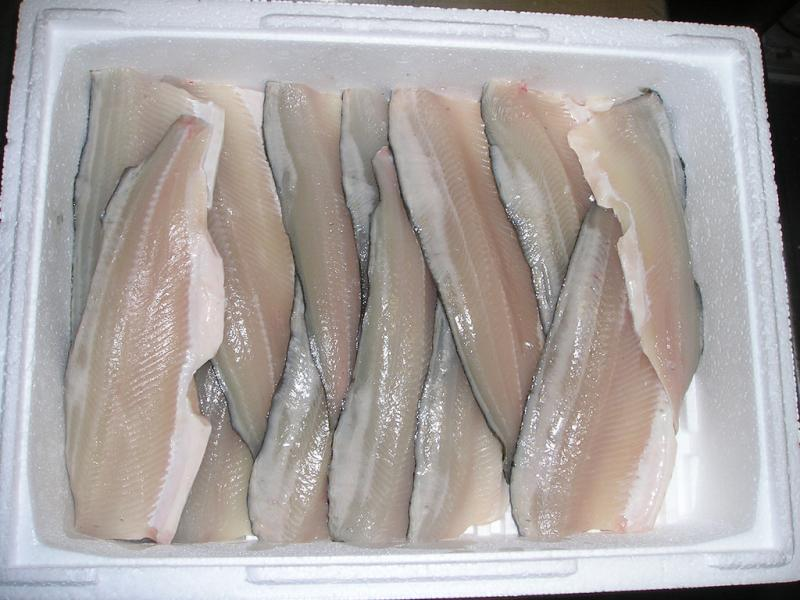 Whitefish filets.