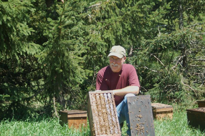 Commercial beekeeper Kirk Jones checks on his honeybees at Sleeping Bear Farms.