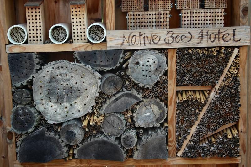 A bee hotel on display at Bee Palooza. The annual event is for people to learn about pollinators by visiting a series of seven stations set up in various parts of the MSU Horticulture Gardens.