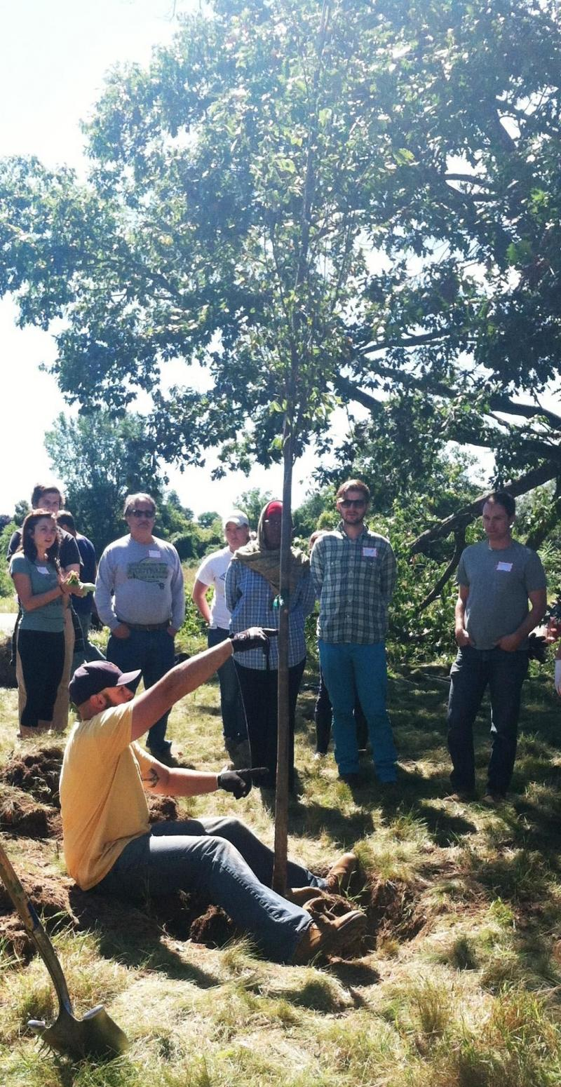 Tree planting demonstration led by the Greening of Detroit