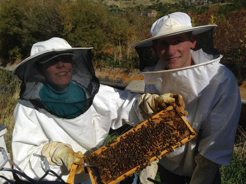 Professor Sandra Burnett, left, and her student Bryan Merrill, have developed a treatment for the devastating American Foulbrood disease. The bacteria that cause the disease kill off bee larvae, and the disease can lead to hive collapse.