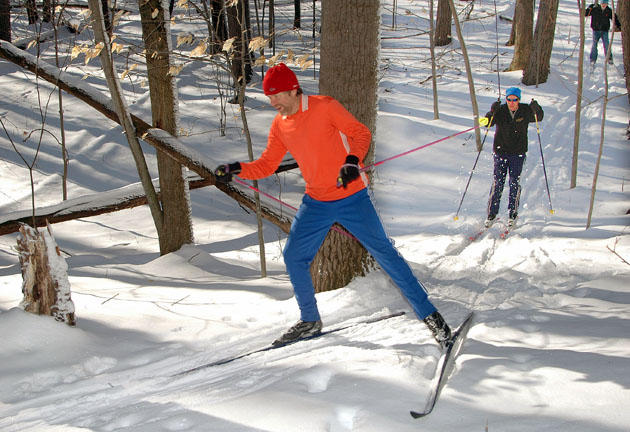 Jeff Potter and friends skiing through a snowy forest park in Okemos.