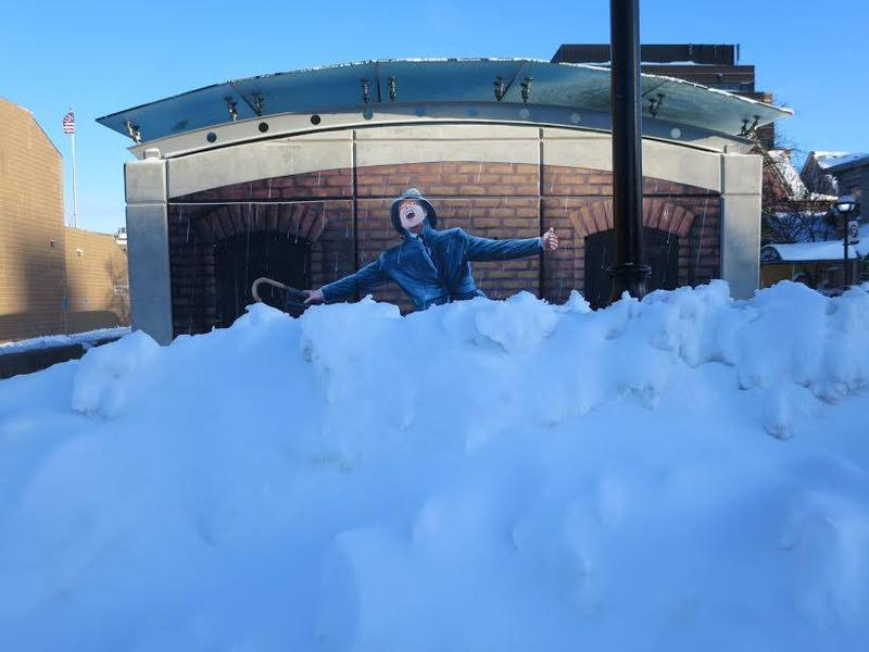Help! I'm covered in snow! (Ann Arbor, MI)