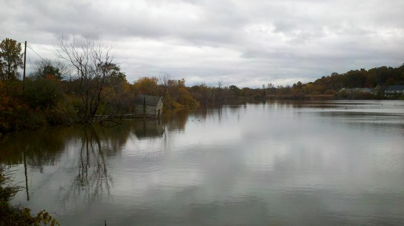 A pond formerly used to grow celery will be restored to wetlands and re-connected to Bear Creek in the Muskegon Lake Area of Concern.