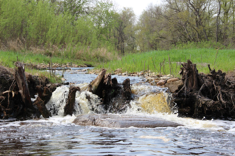 A creek flows through a bank stabilized with toe wood along the Kalamazoo River.