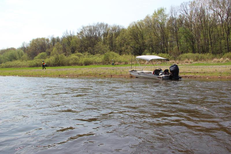 Enbridge contractors monitoring vegetation along the Kalamazoo River.