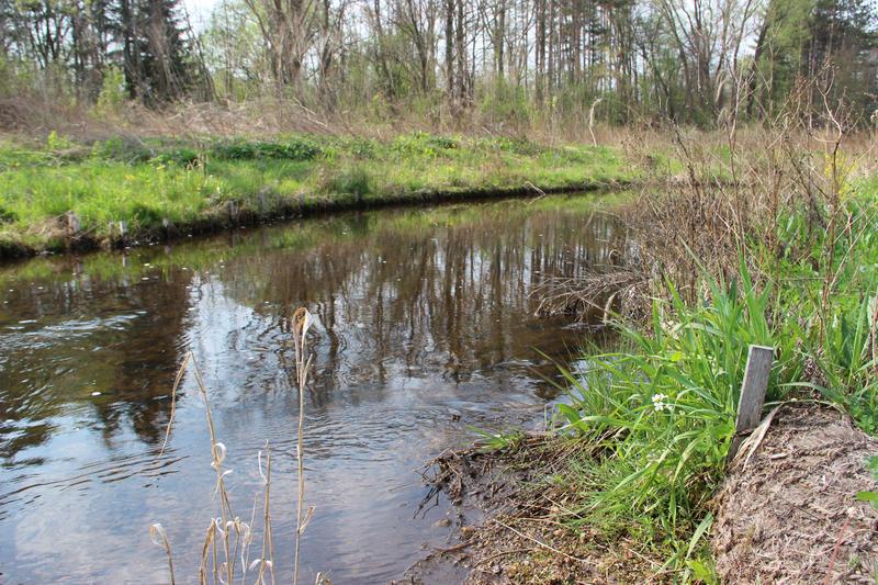 Talmadge Creek today.