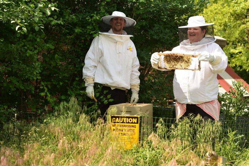 Chef Matt and Chef Gabby inspect the hives.