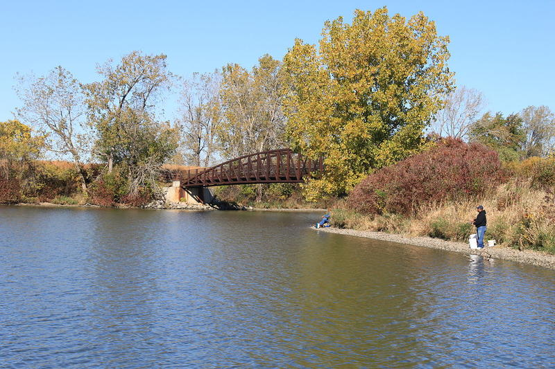 Sterling State Park is the only Michigan state park on the shores of Lake Eerie
