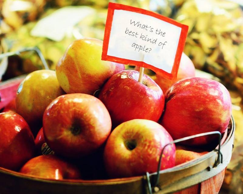What's your go-to apple? Does it change depending on whether you're baking or just snacking?