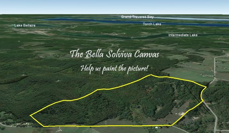 "A ""broad-brush"" view of Bella Solviva"