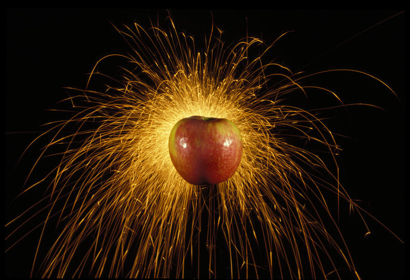 Honeycrisp apples are explosively popular.