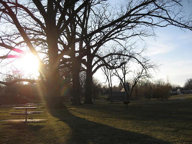 Ann Arbor's West Park