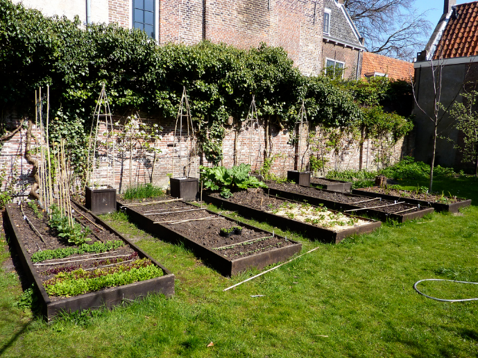 One way to avoid leaded soil when gardening is to put fresh soil in raised beds.