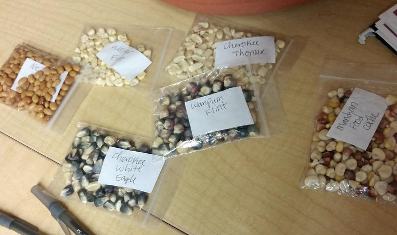 Seeds in the Jijak Foundation seed library.