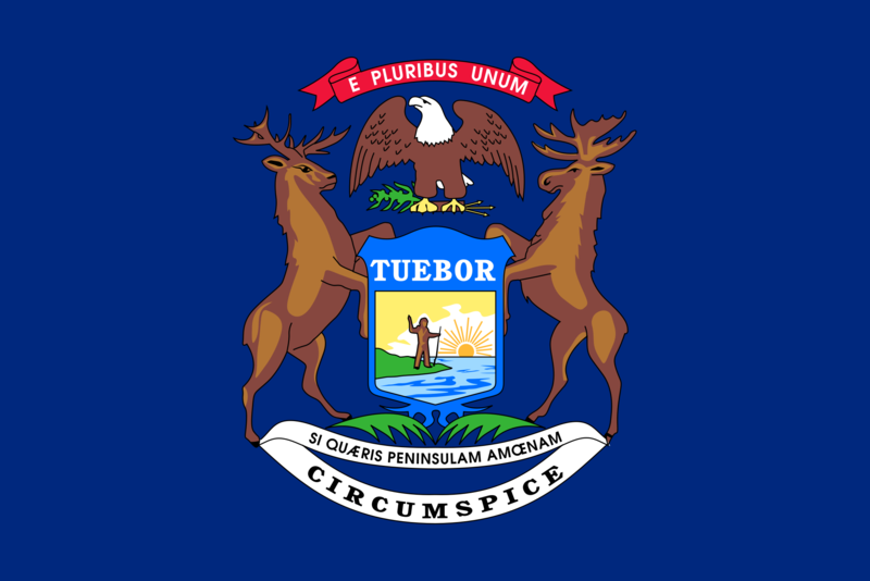 Michigan flag.