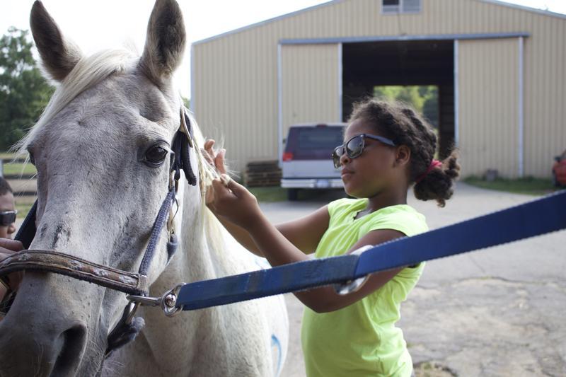 Mya Harling braids a horse's mane.