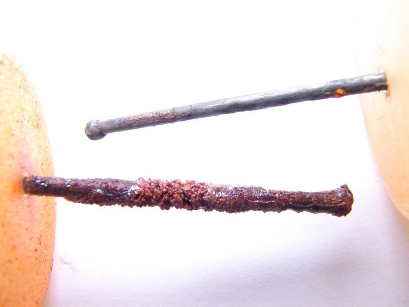 Virginia Tech's Marc Edwards exposed an iron nail to Detroit water (above) and Flint River water with no corrosion control (below.)