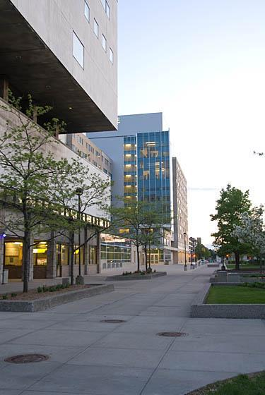 Wayne State University's campus